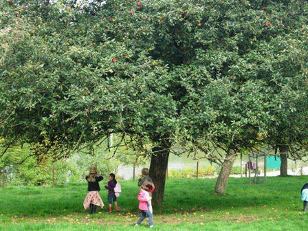 Feest in de boomgaard van het Gewestelijk Domein van Solvay in La Hulpe